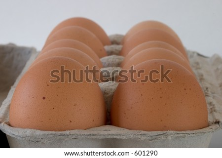A close-up view of a carton of brown eggs, viewed from one end.