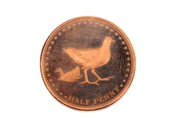 A close up view of a Half Pence Coin from Gough Island
