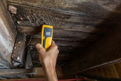 A close-up view of a home inspector at work in a residential basement, assessing signs of structural defects such as wood rot and dampness, with copy space.