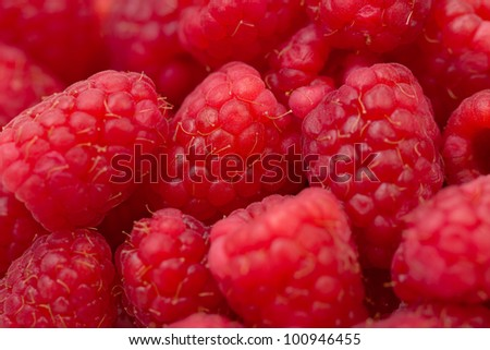 A close up view of fresh organic raspberries