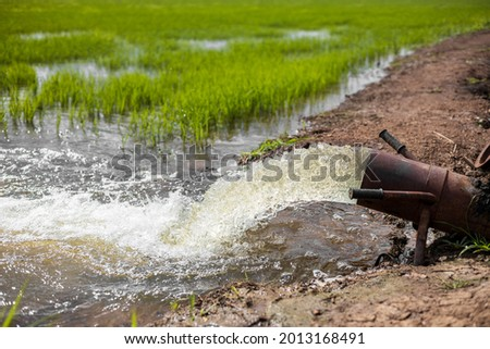A close-up view of water gushing violently from a large old steel pipe on a mound into the green rice fields, often seen in rural Thai agriculture. ストックフォト ©