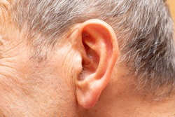 A closeup and side view on the head of an elderly man, showing large ear lobes and grey hair, and strands of hair inside the ear canal.