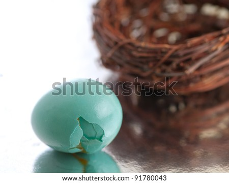 A Closeup Horizontal of a Robins Egg that has Fallen out of Its Protective Home (the Nest) and Can be Used as an Investment Concept about How Plans for the Future Can Go Wrong if Not Planned Well - stock photo