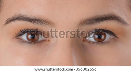 A closeup of a beautiful woman's eyes with makeup - Shutterstock ID 356002556
