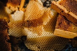 A closeup of a freshly harvested beeswax from a wooden beehive box