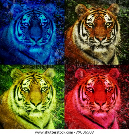A closeup of a lion staring with open eyes. There are four colorful versions. There are bright neon blue and red colors. Use it for a pop art strength concept.