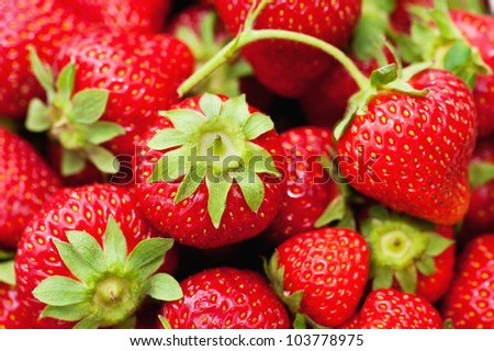 A closeup of fresh strawberries