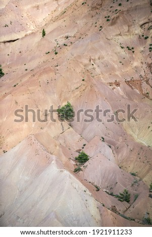 A closeup of rock formations in the Cadi-Moixero Natural Park, Spain Zdjęcia stock ©
