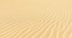 A closeup of striped pattern textural details in light brown sand