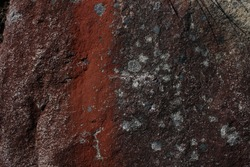 A closeup picture of a surface of a rock on Hehuan Mountain. The red pattern on the rock implies the iron element in its composition.