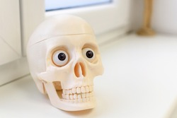A closeup shot of a plastic skull sitting on a windowsill