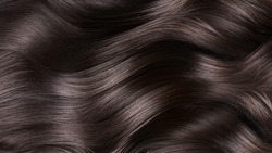 A closeup view of a bunch of shiny curls brown hair.