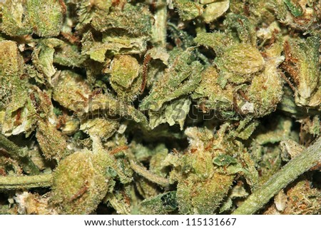 A closeup view of ground up Marijuana leaves.