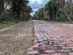 A cloudy view of the red brick and surrounding overgrown forest along the abandoned Pershing Highway that once connected Deland and Daytona, Florida.