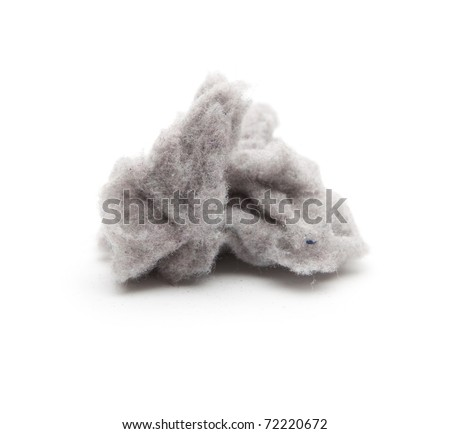 A clump of common house dust. High magnification macro.