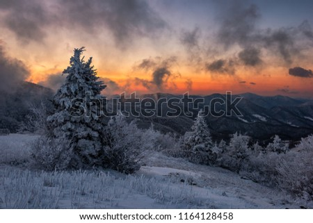 A cold wintry morning along the Appalachian Trail in Tennessee #1164128458