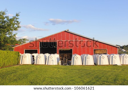 Dairy Calf Hutches a Dairy Barn/calf Hutches/