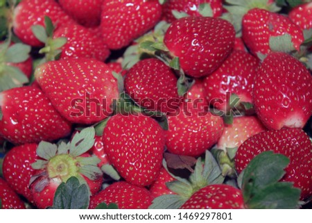 A collection of freshly picked ripe strawberries