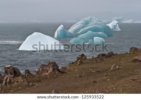 A colorful collection of icebergs drift near Elephant Island where Ernest Shackelton and his crew were wrecked in the South Shetland Islands.  This is a cold and windy part of the planet.