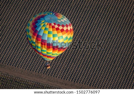 A colorful hot air balloon flies early in the morning at sunrise above the Napa Valley, California, known for its vineyards and wineries in addition to ballooning.  Newly planted grape vines are seen. #1502776097
