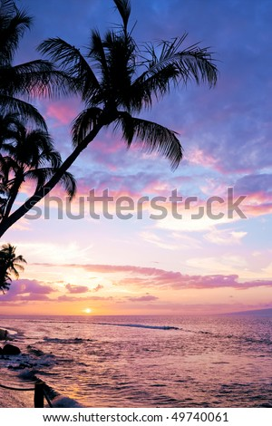 A colorful tropical sunset at Kaanapali Beach in Maui with a silhouette of a palm tree in the foreground