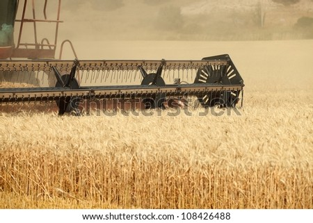 A combine harvesting wheat in a field