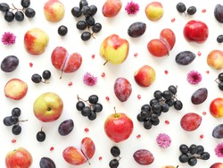 A composition of fruits on a white background. Pattern made from fresh fruits. Top view, flat design. Collage of plum, grapes, apples, flowers, nectarines.