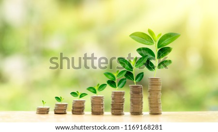 A concept of investment growth like a growing tree from small leaf to big tree. It is a small stack of coin growing to big stack of coin. Concept of rich wealthy and saving money light flare from top.