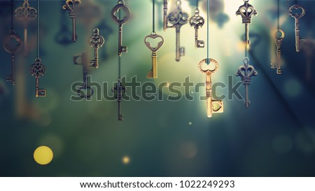 A conceptual image with hanging keys and one shining key. 3D illustration