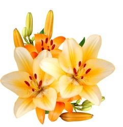 A congratulating lily bouquet