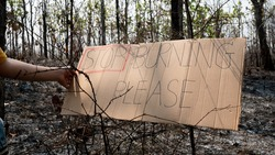 A conservative sentence on cardboard banners in area of the burning forest and firefighters extinguish fires. Human responsibility and protection of nature. World Environment Day.