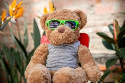 a cool teddy bear with sunglasses sitting on a chair outside in a patio garden
