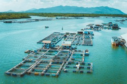 A corner of the oyster feeding farm, float fishing village in Long Son commune, Ba Ria Vung Tau province Vietnam. People living and doing feed fish industry at floating village.