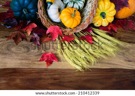 A cornucopia with squash, gourds, pumpkins, wheat and leaves on an old antique harvest  table.  Room for copy space.