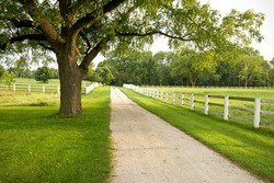A country lane that runs through the Equestrian Center of Danada Forest Preserve in DuPage County, Illinois.