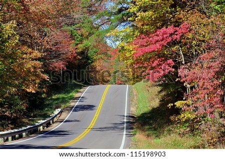A country road and beautiful autumn trees.
