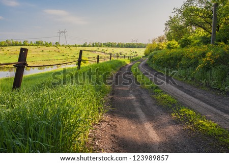 A country road passing trough green spring meadows