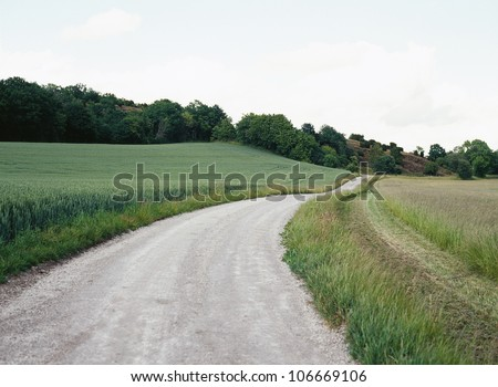 A country road running through green fields.