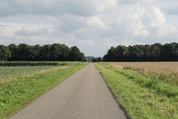 a countryroad between agricultural fields in the dutch countryside and trees and clouds in the background in summer