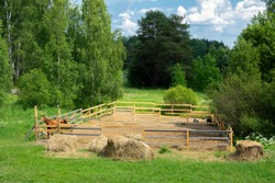 A countryside corral with a skinny brown horse who was rescued from the street from the merciless labor in the city.
