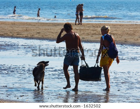 a couple and dog on a summer day at the beach