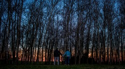 A couple holding hands infront of tall trees in a forest during sunset