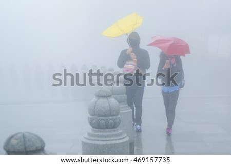 Stock Photo A couple is walking in a middle of the rainstorm inside the park. ( With mist haze and smoke effects the sharpness of the image)