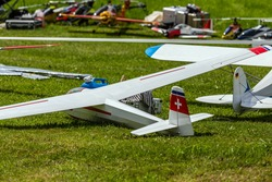 a couple of remote controlled planes lying on the meadow