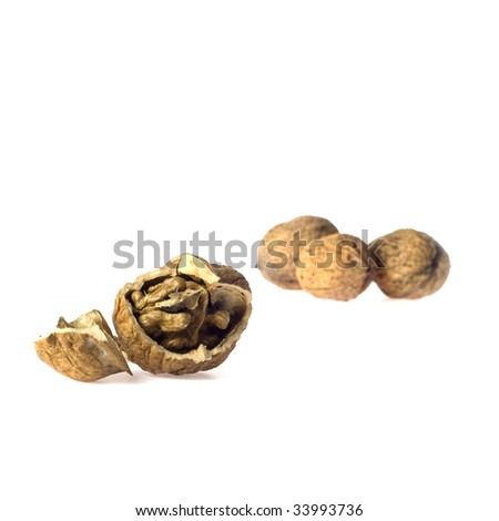 a couple of walnuts, isolated on a white background
