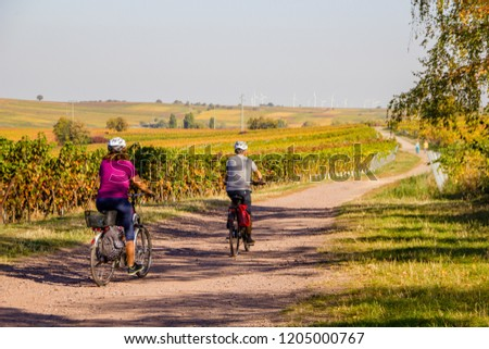 A couple riding the bike with helmets through the vineyard landscape on an autumn day to spend their leisure time outside in nature and doing sports.