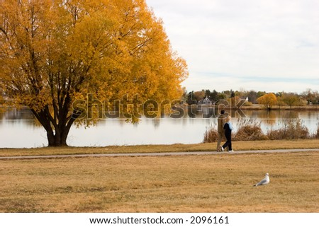 A couple takes a relaxing stroll around the lake during fall's brilliance which is reflected in the calm lake.