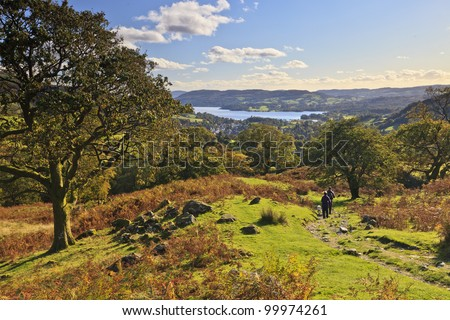 A couple walking their dog above Ambleside overlooking Lake Windermere