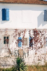 A courtyard in front of a white house with blue shutters in the windows, a table with chairs in the gazebo and hanging vines of red leaves on the vine