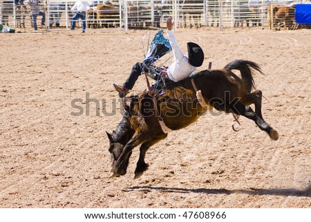 a cowboy competes in the bareback riding event during the O'Odham Tash all-indian rodeo